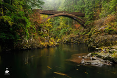 Drizzle Delight (Explored) (Chris Ross Photography) Tags: bridge fall water river washington moulton yacoltwashingtonunitedstates lewisyacoltwashingtonunitedstates