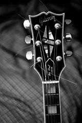 Gibson Guitar (Emman3k) Tags: blackandwhite bw music dof guitar strings gibson