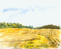 Stubble (Artist Naturalist-Mike Sherman) Tags: november art rural landscape michigan farm transparent onlocation notphotography midwestern watercolorpainting pleinaire midmichigan danielsmithwatercolors