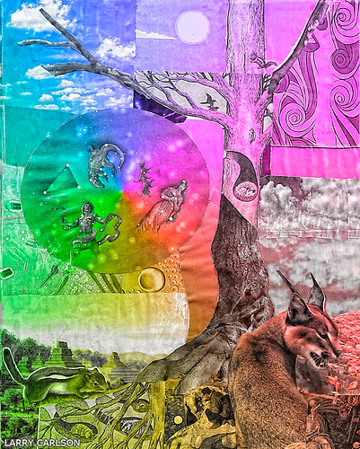 LARRY CARLSON, Bobcat on the Prowl, c-print, 55 x45in., 2012.