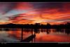 just wow! (Georgie Sharp) Tags: port sunrise colours augusta brilliant bold