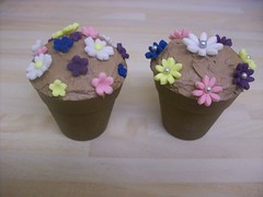 Chocolate plant pots & chocolate cake (sam kershaw) Tags: flowers flowerpot chocolatecake