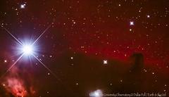Horsehead Nebula,  Alnitak (star) & Flame Nebula in Orion (Earth & Sky NZ) Tags: newzealand stars observatory mackenzie nebula astrophotography nz orion astronomy ida deepspace 2012 tekapo november20th stargazing aoraki mtjohn earthandsky horseheadnebula alnitak thepot 20november mtjohnobservatory mackenziebasin internationaldarkskyassociation mtjohnuniversityobservatory darkskyreserve starlightreserve aorakimackenzieinternationaldarkskyreserve dallaspoll