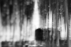house in the wood #2 (nicola tramarin) Tags: wood trees bw italy alberi monocromo poplar italia grove shift tilt bianco nero icm biancoenero bosco mosso veneto tiltshift rovigo pioppeto polesine nicolatramarin