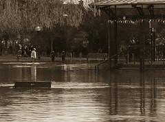 Flood (4) (bennatrinsphoto) Tags: uk england water rain weather river mono blackwhite nikon flood shakespeare adobe desaturated nikkor warwickshire floods stratford afs stratforduponavon stratfordonavon midlands dx lightroom lightroom3 d5100