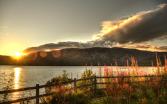 The part that I forgot about (mendhak) Tags: flowers sunset orange lake mountains water fence private geotagged scotland hills flare setting lochness ness fiery mendhakwebsite geo:lat=5737273048 geo:lon=434341611