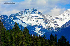 Gradients Of Nature | Project Natural Lighting (1/2) (✿ SUMAYAH ©™) Tags: lighting ca camera canada nature canon project landscape photography eos flickr natural explore alberta pro banff gradients طبيعة 550d of sumayah سمية لاندسكيب صورطبيعه فلكرسمية المصورةسمية سميةعيسى flickrsumayah المصورةسميةعيسى sumayahessa