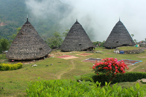 Wae Rebo Traditional Village in Flores