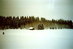 crystal (cHr1st1an S images) Tags: trip trees winter snow color film ice window nature glass colors analog zeiss train finland landscape flickr loneliness crystal contax negative analogue t2 trainwindow absence contaxt2 analogic carlzeiss colorfilm analogico negativefilm chr1st1ans christiansorrentino