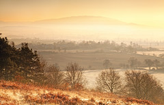 Cold Mist (Natasha Bridges) Tags: morning trees winter mist sunrise dawn countryside frost shropshire fields wrekin