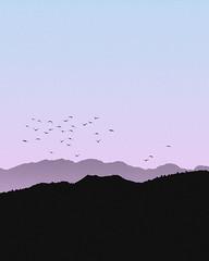Graphic Peace (AubreyKingston.com) Tags: sony landscape minimalist simple birds mountains pint gradient