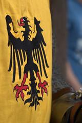 Wappen (HORB-52) Tags: fortnoire schwarzwald blackforest berndsontheimer badenwrttemberg markt wasserschloss rstung helm sulzamneckar glatt wappen
