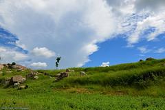 SKY IS NOT THE LIMIT (GOPAN G. NAIR [ GOPS Photography ]) Tags: gopangnair gopan gopsorg gops gopsphotography sky heavenly clouds greenery village india karnataka