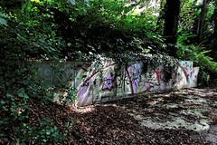"""Art""? (LamiaDeTenebris) Tags: art graffiti augsburg altstadt city bavaria bayern deutschland germany nature natur trees bume kunst stars hexagram hexagramm leaf leafs bltter blatt park garden"