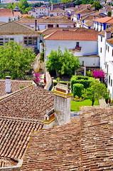 84 - Obidos toits et jardins (paspog) Tags: obidos portugal toits roofs tuiles tiles decken villagemdival medievalvillage