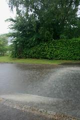 August Bank Holiday Weekend Rain (35/52) (Stu.G) Tags: project52 project 52 project522016 27aug16 27thaugust2016 27th august 2016 august2016 27thaugust 27816 270816 27082016 canoneos400d canon eos 400d canonefs1855mmf3556 efs 1855mm f3556 england uk unitedkingdom united kingdom britain greatbritain rain augustrain rainflood raining heavyrain birdingbury birdingburyvillage birdingburywarwickshire warwickshire