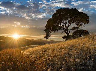 Deer Valley Sunset (Explore #118)