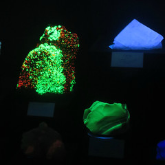 Fluorescent Rocks I (edenpictures) Tags: mineral rocks samples glowinthedark glowing tellussciencemuseum cartersville georgia crystal willemite calcite
