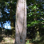 DSC_0871-1 thumbnail
