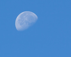 Waning Gibbous Moon 23 Aug 2016 (Sculptor Lil) Tags: canon700d dslrsingleexposure astrophotography daylightmoon handheld moon waninggibbous
