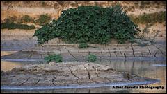 Wadi-e-Hanifa, Riyadh, Saudi Arabia (Adeel Javed's Photography) Tags: crackearth wadiehanifa riyadh saudiarabia adeel javed