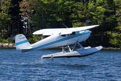 Private Cessna 140 N72687 (jbp274) Tags: lake water greenville greenvilleseaplaneflyin flyin airplanes seaplane floatplane 52b cessna c140 mooseheadlake