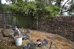 Exhumación As Covas (Lugo) (1)