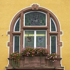 Tribunal (Dan Daniels) Tags: windows tribunals courthouses nikon audand alsace france villedesierentz flowers