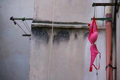DSC_3406 (Tenzin Osel) Tags: bra pinkbra girl florence oltrarno dila diladdarno wall boboli portaromana viadellecaldaie tuscany