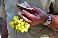 sweet bread, sweet life, full of efforts and smiles (dimitra_milaiou) Tags: bread grapes greek man people life greece andros milaiou dimitra colours love europe village happiness beautiful moment happy food nikon d90 d 90 hand fingers time watch sweet live effort smile day ανδροσ λειβαδια ψωμι σταφυλια ελλαδα μηλαιου δημητρα island cyclades hellas green nature yellow world fruits summer augoust 6 μαρινοπουλοσ μανιταρι κτημα σωτηροσ εκκλησια πανηγυρι σταφυλι σταφιδα φρουτο φρουτα καλοκαιρι αντρασ vine vives vinery vineyard foodphotography cook photography κουζινα φαγητο