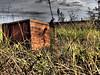 Wooden Box (picsbyrita) Tags: texas farm walkercounty woodenbox ansh scavenger18 allnewscavengerhunt ansh18 the43