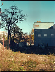 blue (catalin hladi) Tags: street sky urban color colour film kodak sunny clujnapoca 110mm mamiyarz67
