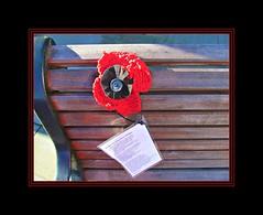 Remembrance Day (pefkosmad) Tags: november docks bench war poem sunday gloucestershire gloucester poppy ww2 ww1 remembranceday firstworldwar worldwar wartime armistice secondworldwar lestweforget flandersfields marinerschurch 11thnovember yarnbomb replytoflandersfields stanleypetley