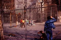 NYC April 1980 pic065 (streamer020nl) Tags: nyc dog chien boys playground basketball court 2000 manhattan hond hund avenue sixth 1980 3000 americas 1000 6thavenue 6th 4000 avenueoftheamericas basketbal