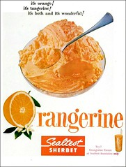 Orangerine Sealtest Sherbet 1955 (1950sUnlimited) Tags: food design desserts icecream 1950s packaging snacks 1960s dairy midcentury snackfood sealtest
