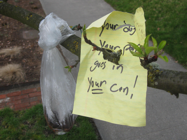 Dog Poop Bag Trash Can