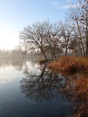 November (deu49097) Tags: autumn lake