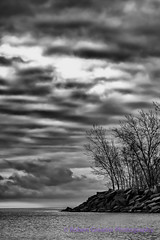 Lake Ontario Mood (Fulcrum imaging Robert Greatrix) Tags: morning trees blackandwhite bw lake toronto canada cold fall beach water monochrome clouds sunrise point landscape rocks waves mood cloudy sony rocky sigma stormy lakeshore beaches lakeontario sonycamera copyrighted landscapephotography sigmalens canadianphotographer sigma70200 torontophotographer sonyalpha sonydslr robertgreatrixphotography