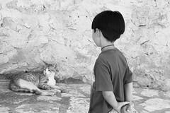 Sicilia (Maieutica) Tags: summer bw muro look stone wall cat hair back kid hands child estate arms mani bn sicily shoulders pietra gatto sicilia schiena capelli bambino braccia guardare scopello spalle