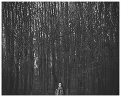 (Caroline Alexander) Tags: trees winter red portrait woman snow ice girl beautiful field misty fog forest scarf mouth print photography nikon lips leopard mysterious depth atmospheric d300