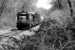 Inbound Manifest Train (greenthumb_38) Tags: railroad blackandwhite bw yard train blackwhite duotone locomotive trainyard csx jeffreybass