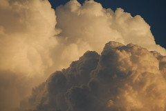 Tuckurimba evening upwellings (dustaway) Tags: clouds australia nsw storms cumulonimbus northernrivers australianweather australianstorms