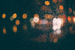 rainy (yako ma) Tags: nikon nikondf df digital carlzeiss zeiss makroplanar planar