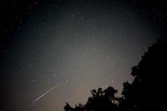 Perseid Meteor Shower (Jenny.Lawrence) Tags: perseid meteor shower stars shootingstars night nightphotography sony sonyalpha a7 35mm zeiss