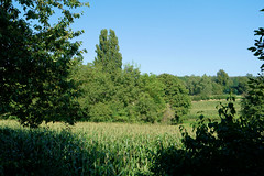 Mein Bruchsaler Hgelland (infactoweb) Tags: bruchsal wandern obergrombach hgel hgelland weinberge kraichgau infactoweb