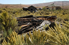 Back to Nature (arbyreed) Tags: arbyreed old forgotten ghosttown sageghosttown lincolncountywyoming railroad railroadghosttown unused train southernpacificrailroad unionpacificrailroad oregonsortlinerailroad abandonedtown overlandstageroute