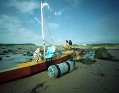 Gone Sailing (wheehamx) Tags: soft toy pinhole adventure beach sailing sail hoss bige rufus