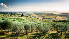 peaceful (maricontis) Tags: belvedere chianti toscana panorama summer landscape italy