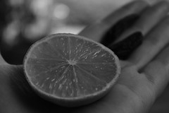 Aroma (Nathalie_Désirée) Tags: lime tonka coumarin hand summer scent aroma finger fingers bokeh macro closeup outdoor outdoors bw blackandwhite monochrome mono black white fruit fruits spice spices skin smell smelling savour savouring sensation sensations wellness spa nature sun sunlight ingredient ingredients sweetlime perfume fragrance odor life alive essence citrus citrusfruit citrusfruits tonkabean tonkabeans bichrome art design mysel myselection