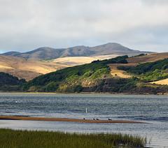 Tomales Bay (nrg_crisis) Tags: tomalesbay california inlet marincounty